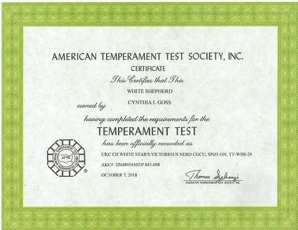 Nero ITT certificate139 (2).jpg
