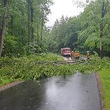 200511_Baum auf Fahrbahn.JPG