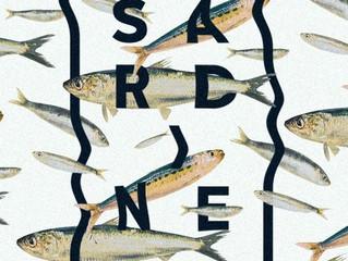 Sardines Rehearsals - Week 1