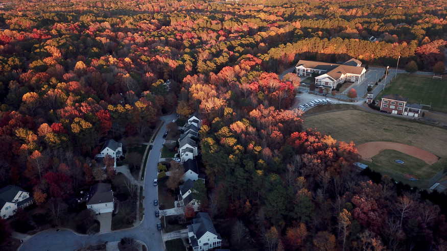Fall color in Cary, NC