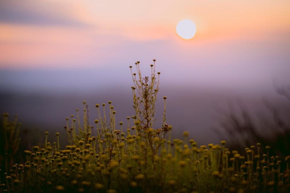 Flickr - El Montcau at dawn.jpg.jpg.jpg