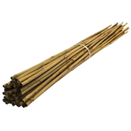 Bamboo Canes - 90cm