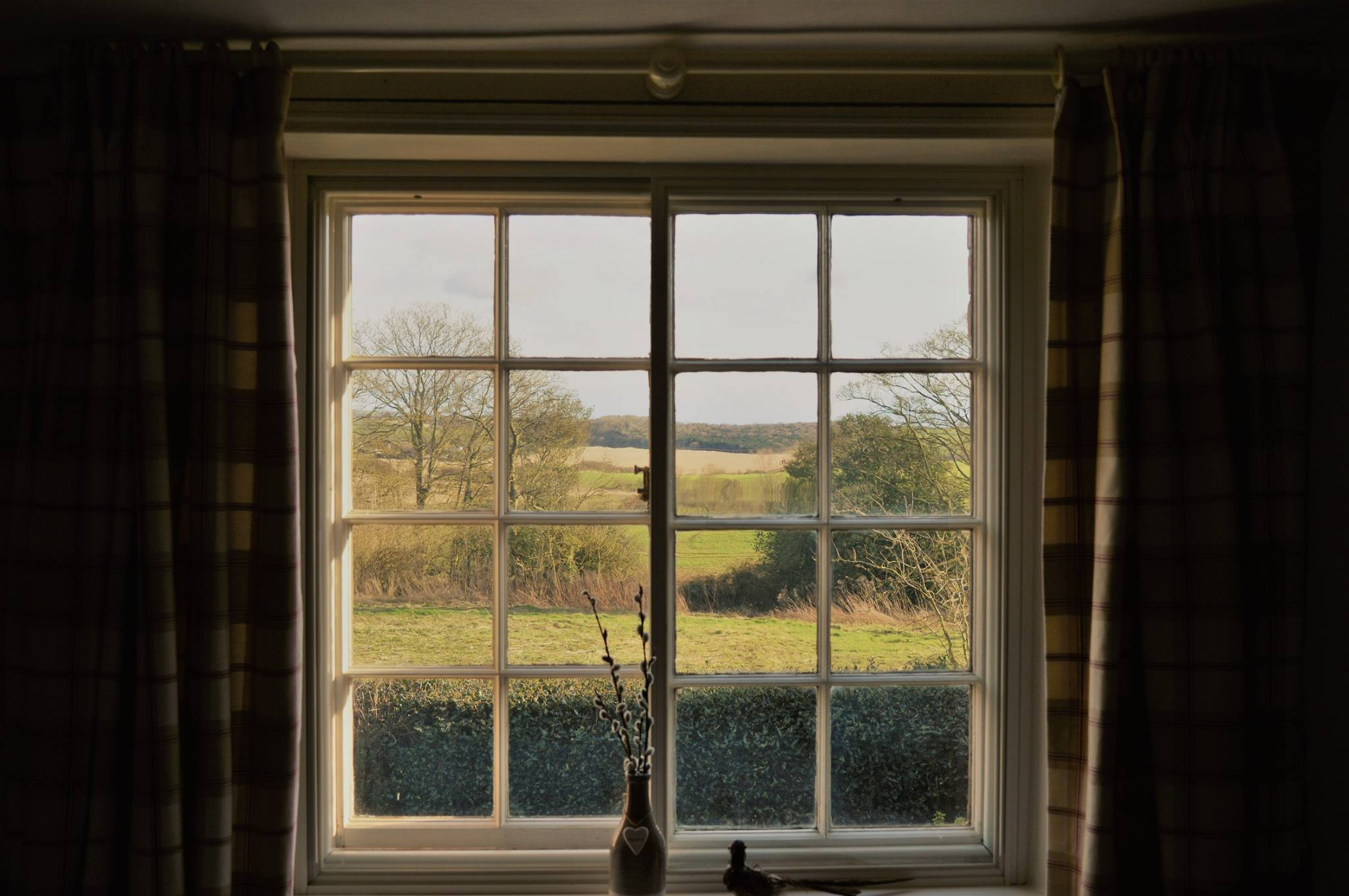 Pheasant Room Window