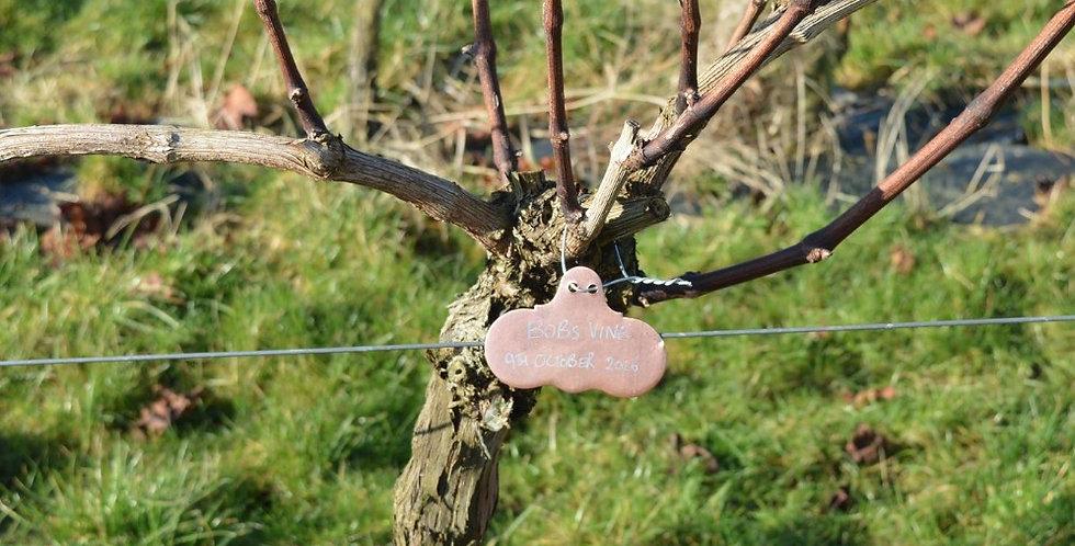 Adopt a Vine