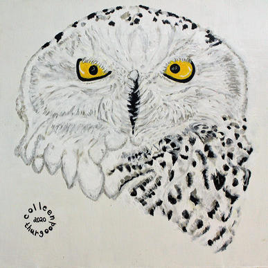 Snowy Owl      2'x2'