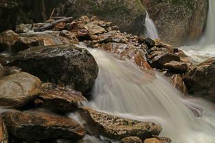 Sicamous Creek Nov 21