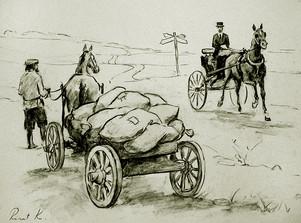 РинатК. Чванливый лошак.jpg