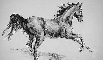 Бегущая лошадь4_edited.jpg