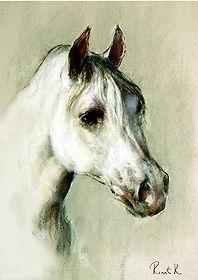 Голова лошади1.jpg