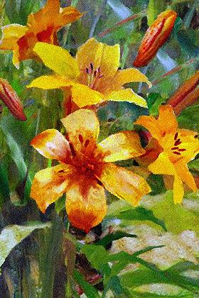 «Лилии»  С картины Рэйя Кинсгли