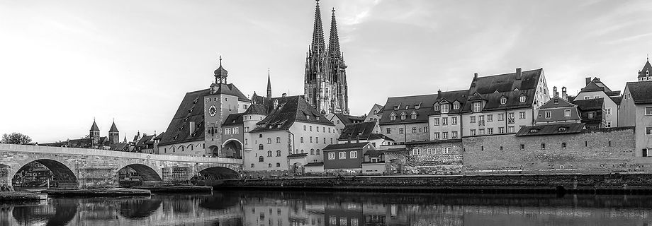 Germany_Houses_Rivers_Bridges_Regensburg