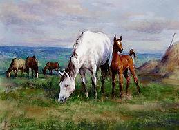 РинатК.Лошади на лугу 1а2а.jpg