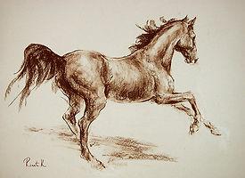 Бегущая лошадь4.jpg