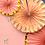 Thumbnail: Ballet Theme Party Decoration