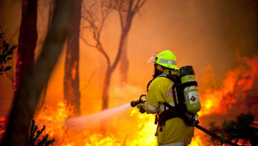 Union warns of increased risk of bushfire if Western Power privatised
