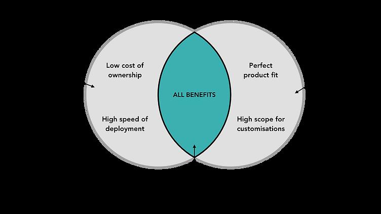 Software Development Options.png