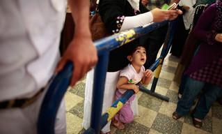 Egypt Law : Legal Custody