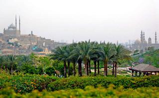 Egypt Law : Public Property