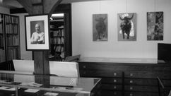 Exposition Torero blessé et oeuvres peintes
