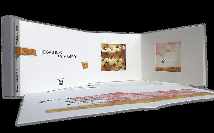 HEXAGONES EN DESARROI Michel Butor, Bern