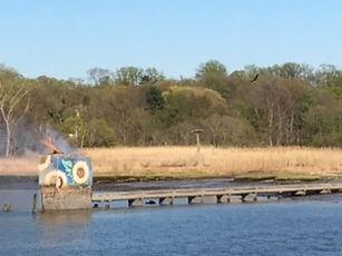 Osprey Nest Fire-2.JPG