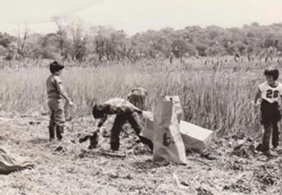 Cleanup 1973.jpg