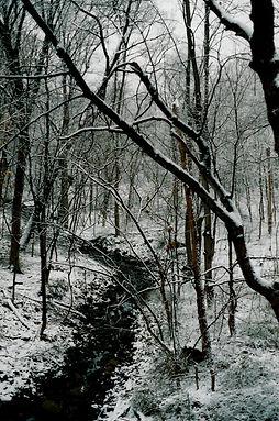 Gabler's Creek in Winter; photo by Pat S