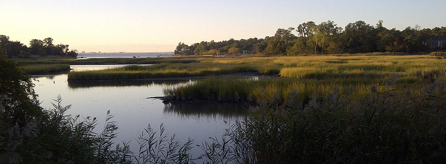 UdallsCove from Virginia Point2.jpg