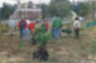 South Ravine -1995 Tree Planting 2.jpg