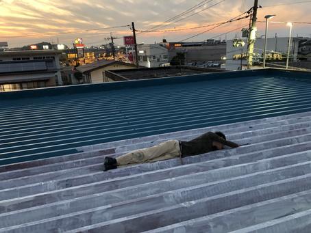屋根もペイントで長持ち!