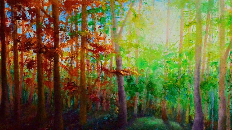 'October' 40x50cm mounted art print