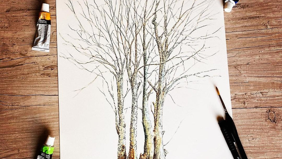 Family of Trees A3 Print