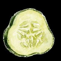 Cucumber 06.png
