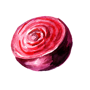Beetroot 04.png