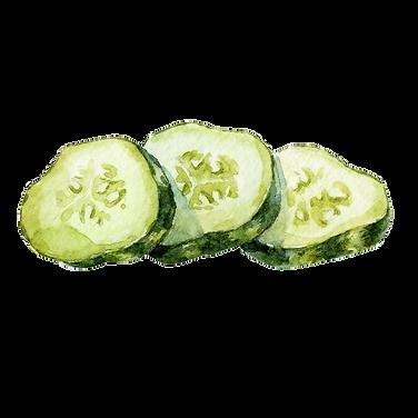 Cucumber 07.png