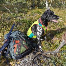 På jakttur i Valdres