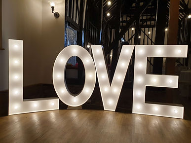 LOVE Lights2019 .jpg