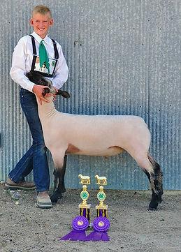 Henry Miller lamb.jpg