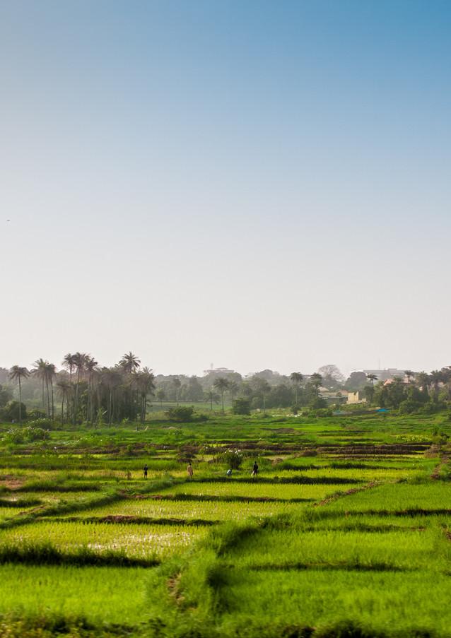 Bissau17.jpg