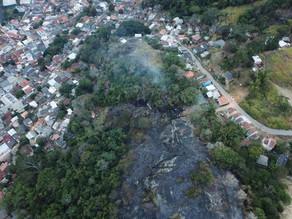 Santa Catarina tem aumento de 400% de incêndios em vegetação em 2020