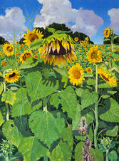 Sunflowers small.jpg