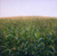 Contemporary landscape painting of a corn field by Miguel Saludes