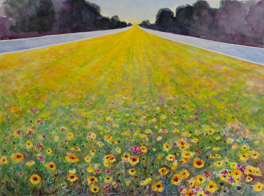 Florida Highway Bloom.jpg