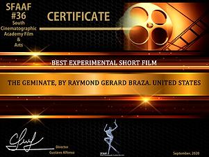 Best Experimental Short Film.png