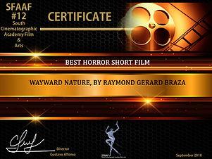 Best Horror Short Film12.jpeg