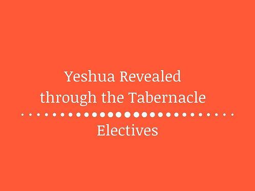 Yeshua Revealed through the Tabernacle