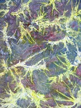 NeuronsOn.jpg