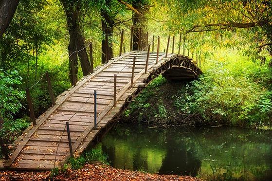 Holzbrücke über den Fluss rustikaler Gehweg mit Herbstlaub sonniger Tag.jpg