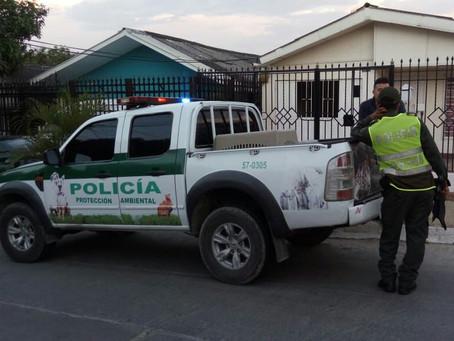 Denuncia por recolecta de animales en Barranquilla