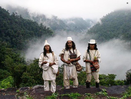 The Wiwa Foundation: Committed to the colombian indigenous culture